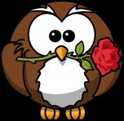 Sova s růží